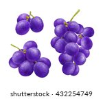 collections of ripe grapes with ... | Shutterstock . vector #432254749