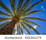 tall tropical palmtree with the ... | Shutterstock . vector #432261274