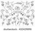 vector floral set. graphic...
