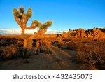 desert landscape of joshua tree ... | Shutterstock . vector #432435073