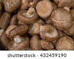 shiitake mushroom background... | Shutterstock . vector #432459190