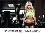 young fitness woman execute... | Shutterstock . vector #432582040