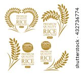 rice. vector illustration. | Shutterstock .eps vector #432736774