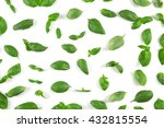 fresh basil leaves on white... | Shutterstock . vector #432815554