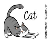 cat design. animal concept.... | Shutterstock .eps vector #432885049