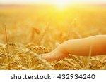 hands of little girl in the... | Shutterstock . vector #432934240