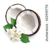 coconut and white jasmine...   Shutterstock . vector #432959770