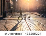 Stock photo  brooklyn new york city april the woman take a walk with dogs at sunset on brooklyn 433205224