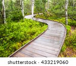 Narrow Wooden Path In The Forest