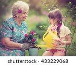 happy grandmother with her... | Shutterstock . vector #433229068