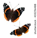 Two Red Admiral Butterflies ...