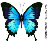 Stock vector butterfly blue butterfly papilio ulysses mountain swallowtail isolated vector on white 433257496