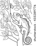 Coloring Pages. Wild Animals....