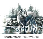 Watercolor Painting White Canine