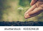 agriculture   nurturing baby... | Shutterstock . vector #433324618
