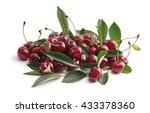 cherry. | Shutterstock . vector #433378360