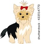 yorkshire terrier dog | Shutterstock .eps vector #433514770