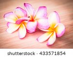 colorful frangipani flower on... | Shutterstock . vector #433571854