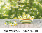 Assembled Chamomile Flowers In...