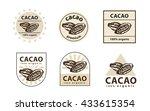 cacao logo. cacao bean sign.... | Shutterstock .eps vector #433615354