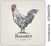 rooster in graphical style ... | Shutterstock .eps vector #433640206
