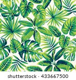 tropical seamless pattern with... | Shutterstock .eps vector #433667500
