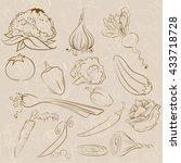 vegetables | Shutterstock . vector #433718728