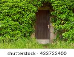 Wooden Basement Door Overgrown...