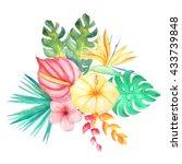 set of watercolor hand painted... | Shutterstock . vector #433739848