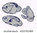 contour aquarium fish on white... | Shutterstock .eps vector #433792489