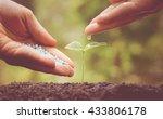 agriculture   nurturing baby... | Shutterstock . vector #433806178