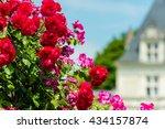 Stock photo bush of beautiful roses in a french garden horizontal shot 434157874