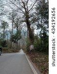 road | Shutterstock . vector #434192656