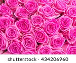 pink roses close up background   Shutterstock . vector #434206960