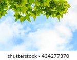 autumn maple leaves against... | Shutterstock . vector #434277370
