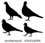 pigeons silhouette isolated | Shutterstock .eps vector #434316004