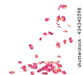 Stock photo rose petals speckled fall on the floor isolated background 434340598