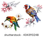 bright birds on branches with... | Shutterstock . vector #434393248