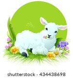 White Lamb Lying On Grass....