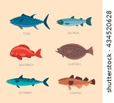 Set Of Sea Fish  Scomber ...