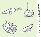 hand drawn vector illustration... | Shutterstock .eps vector #434629573
