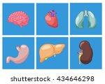 human body parts cartoon set