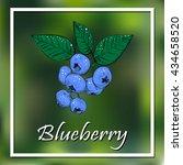 blueberries. blueberries.... | Shutterstock .eps vector #434658520