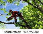 man saws oak chainsaw at height | Shutterstock . vector #434792800