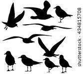set of sea gull silhouette ... | Shutterstock .eps vector #434815708