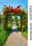 Stock photo photo of very nice garden with lots of roses 43493095