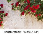 frame of wild red roses in the... | Shutterstock . vector #435014434