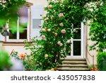 Stock photo botanic garden with blossom flowers andlau alsace france 435057838