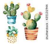 watercolor handpainted cactus... | Shutterstock . vector #435131944