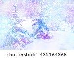 Winter Woods. Winter Landscap...